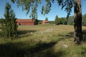 Värt att bevara. Naturbetesmark och vacker landskapsbild vid Bovallen i Lisjö, 20/7 2007. Foto: Tom Sävström