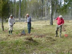Ängen fagas av Lise-Lotte Norin, Tom Sävström och Lars Bsenko. Muren 26/4 2014. Foto: Einar Marklund