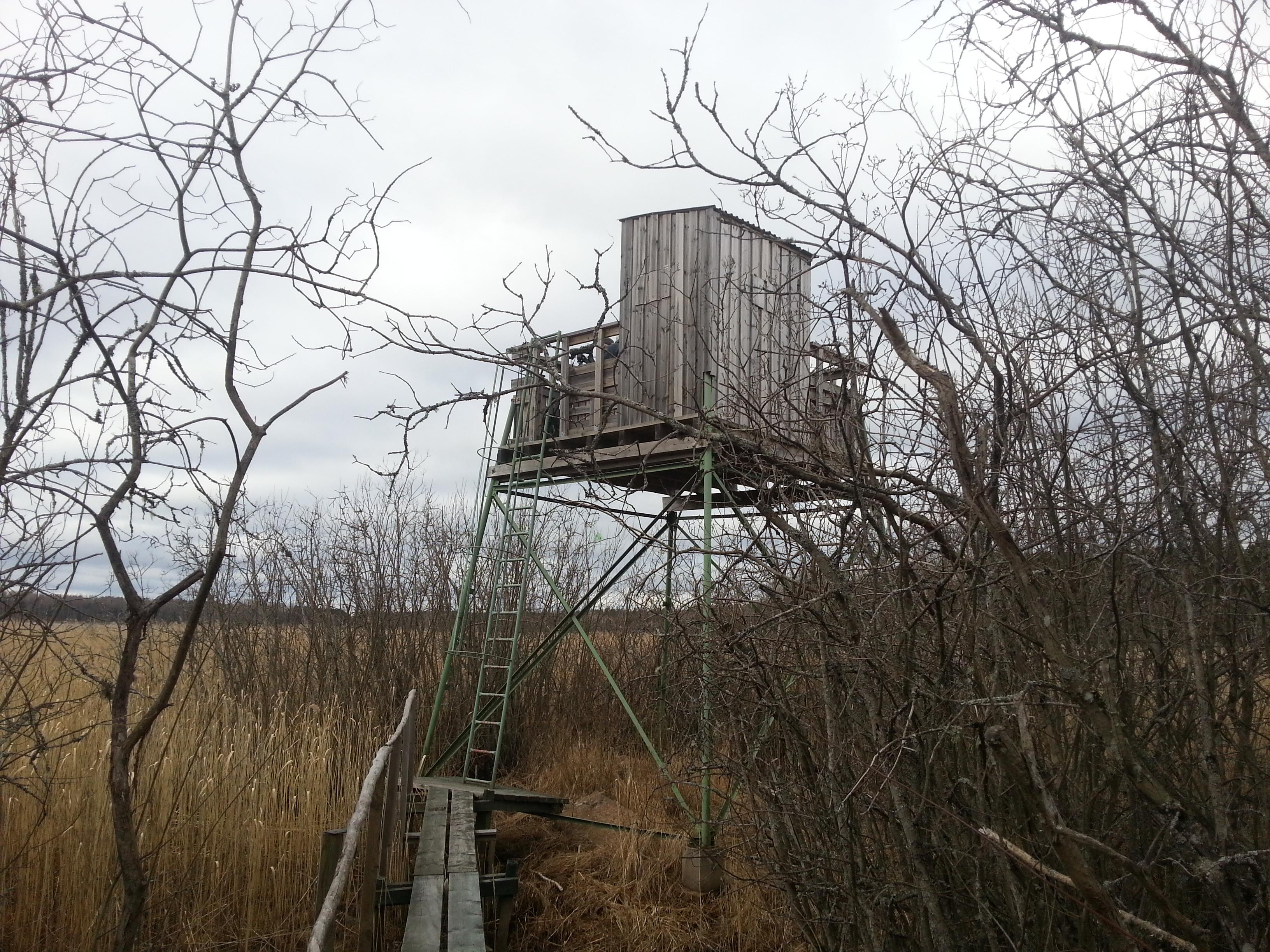 Fågeltornet vid Norrsjön