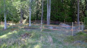 Inhägnat område för skydd av grönkulla. Kohagen NR 21/5 2014. Foto: Lars Bsenko
