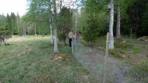 Tom och Einar har påbörjat arbetet med att bygga en inhägnad. Kohagen NR 21/5 2014. Foto: Lars Bsenko