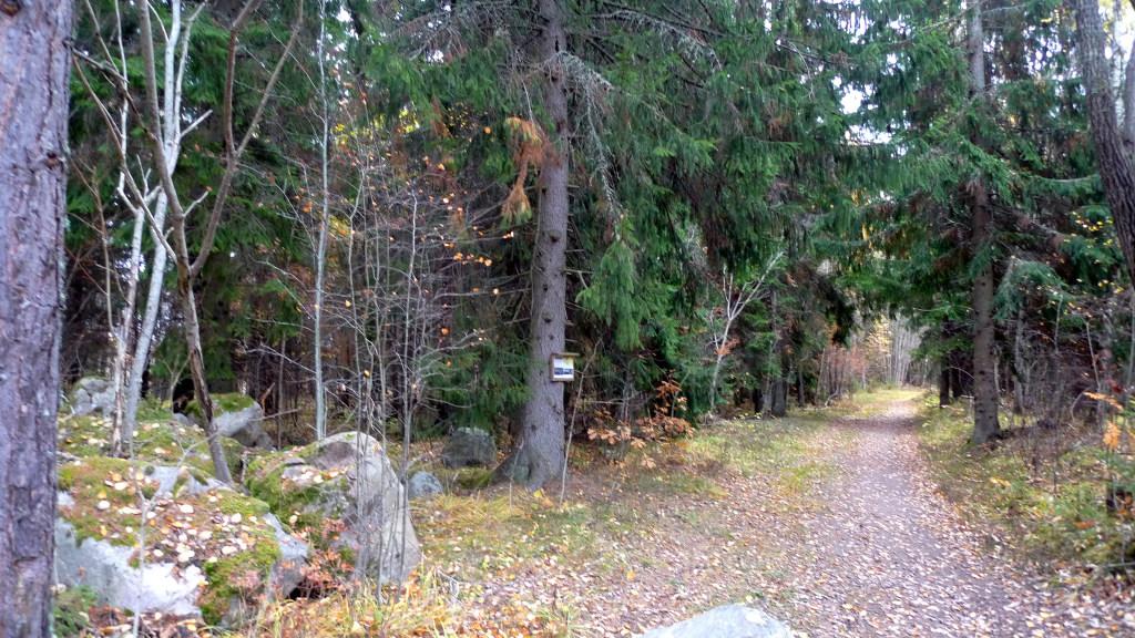 På stigen en bit in från väg 252 har Naturskyddsföreningen satt upp en informationsskylt. Slagghögarna 15/10 2013. Foto: Lars Bsenko