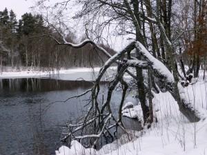 Kolbäcksån vid Sätten. 11/1 2015. Foto: Einar Marklund