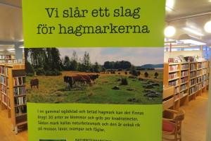Vi slår ett slag för hagmarkerna. Biblioteket Surahammar. 31/1 2015. Foto: Tom Sävström