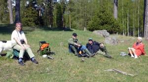 Paus i hagen. Foto: Einar Marklund