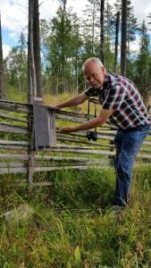 Här inbjuder ordföranden Tom Sävström fjärilar till övervintringsholk i vår slåtteräng i Muren. 16/8 2015. Foto: Jesper Gustavsson