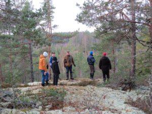 På Fjällbergets tall- och lavklädda platå, 20/11 2016. Foto: Tom Sävström
